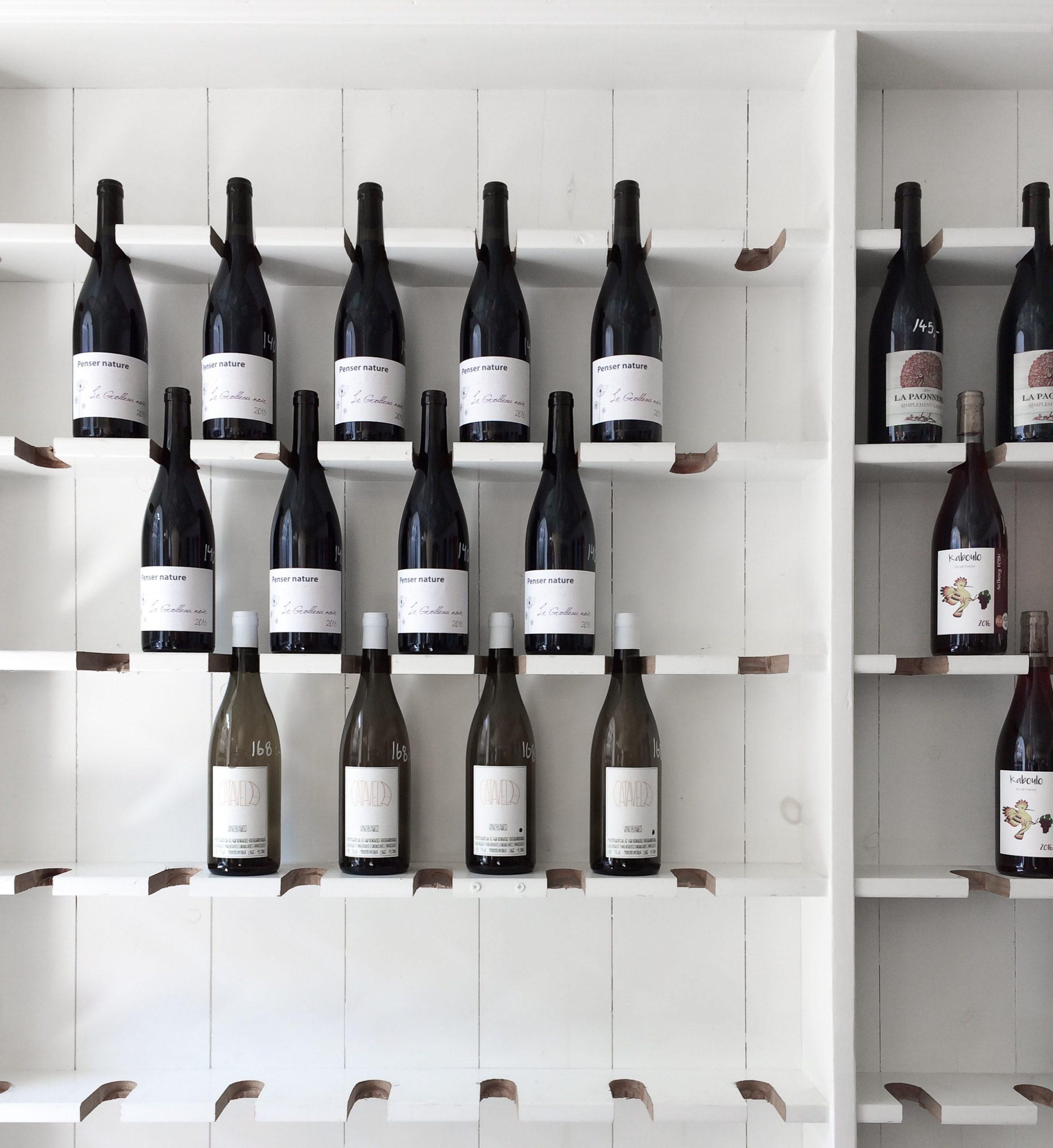 cave a vin polyvalente choisir