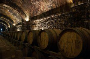 quelle cave à vin choisir en fonction de vos besoins ?