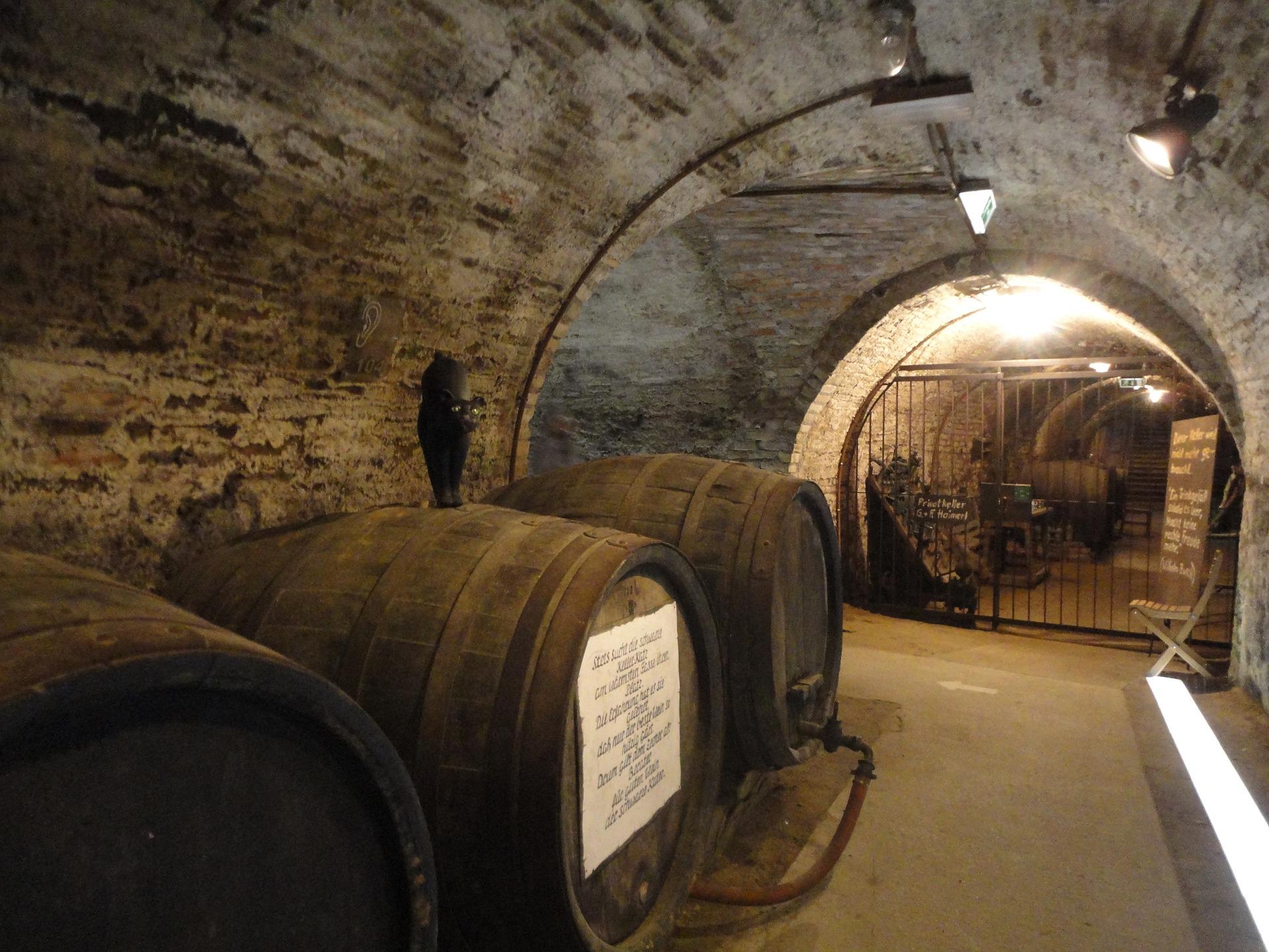 Quels éléments sont à prendre en compte pour savoir s'il faut conserver un vin plutôt qu'un autre ?